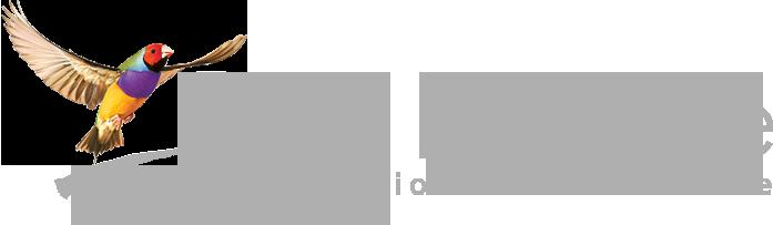 best_practice_logo